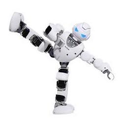 ROBOT ALPHA 1S